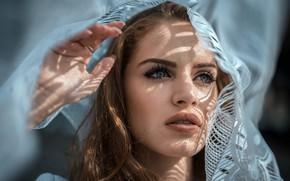 Обои крупный план, модель, рука, портрет, макияж, прическа, шатенка, красотка, боке, тюль, Marco De Santis, Mariagrazia ...