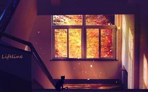 Картинка кошка, коридор, лестница, by Lifeline
