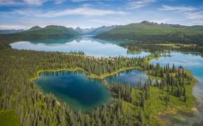 Картинка лес, горы, озеро, Аляска, панорама, Alaska, Аляскинский хребет, Alaska Range, Chelatna Lake