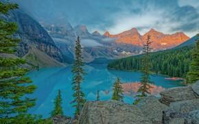 Картинка лес, деревья, горы, озеро, утро, Канада, Альберта, Banff National Park, Alberta, Canada, Moraine Lake, Valley …