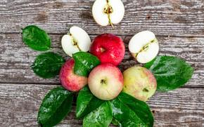 Картинка листья, яблоки, урожай, плод