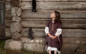 Картинка животные, стена, девочка, котята, ребёнок, изба, Александр Калинин