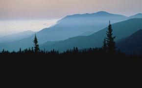 Картинка лес, небо, деревья, закат, горы, природа, туман, скалы, вечер