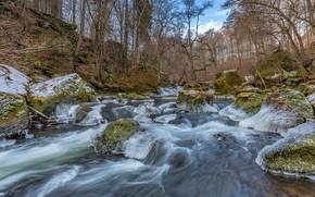Картинка лес, камни, мох, лёд, Германия, речка, frozen, South Eifel