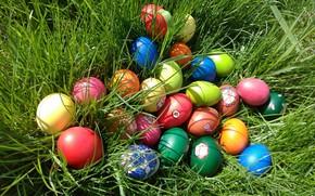 Картинка Трава, Пасха, Яйца, Meduzanol ©, Весна 2018