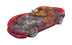 Картинка Dodge, Viper, cutaway, engineering