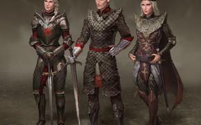 Картинка люди, воины, кольчуга