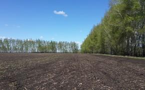 Картинка поле, природа, посадка, чернозём