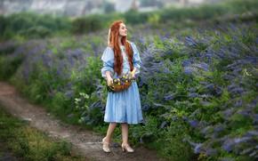 Картинка поле, лето, взгляд, девушка, цветы, поза, фото, платье, рыжая, красивая, Бармина Анастасия
