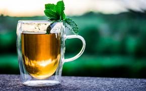 Картинка чай, чашка, напиток, мята