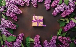 Картинка цветы, фон, подарок, сирень