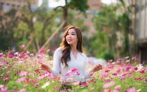 Картинка девушка, цветы, луг, азиатка, милашка, боке