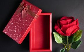 Картинка праздник, подарок, роза