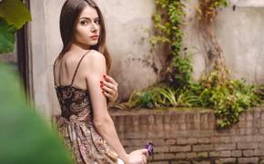 Картинка цветок, взгляд, поза, Девушка, платье, Jose Sotelo