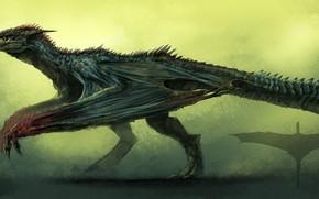 Картинка дракон, воин, силуэт, крылатый