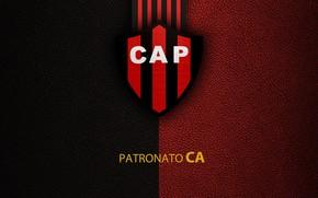 Картинка wallpaper, sport, logo, football, Club Atletico Patronato