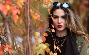 Картинка взгляд, листья, девушка, ветки, модель
