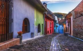 Картинка город, дома, мостовая, улочка, Румыния, Трансильвания, Сигишоара