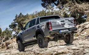 Картинка камни, серый, растительность, Ford, кузов, Raptor, пикап, подвеска, Ranger, корма, 2019