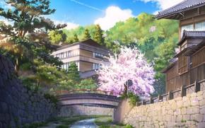 Картинка мост, природа, дома, весна, сакура, by NIK