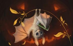 Картинка ветка, мышь, летучая