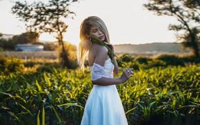 Картинка взгляд, девушка, солнце, природа, поза, вечер, платье, боке, Nicola Davide Furnari