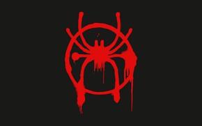 Картинка человек-паук, spider-man, лого, символ, эмблема, logo, symbol, Spider-Man: Into the Spider-Verse, через вселенные