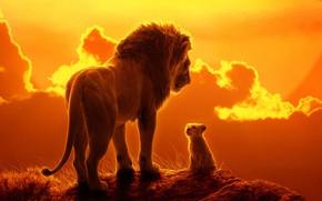 Картинка Закат, Вечер, Стиль, Лев, Африка, Хищник, Арт, Art, Predator, Король Лев, Симба, Cat, Lion, Africa, …