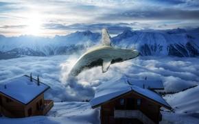 Картинка горы, дома, кит
