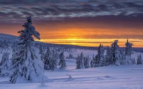 Картинка Norway, Oppland, Hornsjø Sunset, Sjøsætra