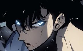 Картинка взгляд, лицо, парень, Sung Jin-Woo, Solo Leveling, Поднятие уровня в одиночку