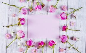 Картинка цветы, розы, рамка, розовые, бутоны, pink, flowers, beautiful, roses, frame