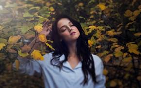 Картинка поза, волосы, Девушка, Ленар Абдрахманов, Анастасия Зайцева