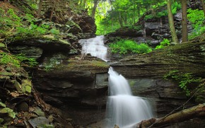 Картинка Вода, Природа, Поток, Водопад, Скалы, Деревья, Река, Лес, Камни