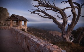 Картинка night, tree, australia, Mount Buffalo