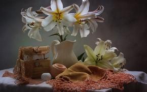 Обои цветы, лилии, натюрморт