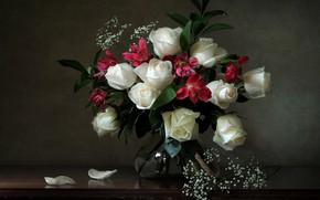 Картинка розы, букет, лепестки, белые розы, гипсофила, альстрёмерия