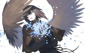 Картинка цветы, фентези, крылья, ангел, парень, незабудки