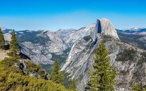 Картинка лес, небо, солнце, деревья, горы, камни, скалы, высота, Калифорния, ущелье, США, Йосемити, Yosemite National Park
