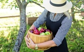 Картинка девушка, яблоки, шляпа