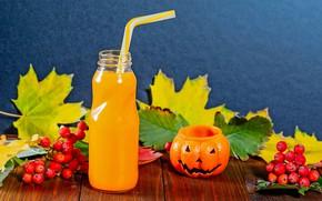 Картинка фото, сок, Halloween, тыква, рябина