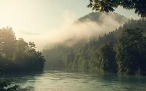 Картинка лес, пейзаж, природа, туман, река, гора, утро, Альпы