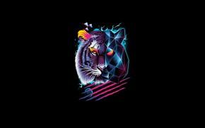 Картинка Минимализм, Тигр, Кот, Стиль, Фон, Морда, Хищник, Арт, Art, Tiger, Predator, Style, Neon, Cat, Background, …