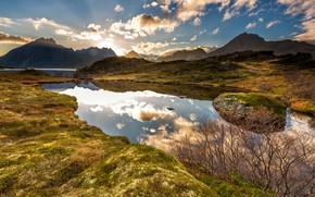 Картинка зелень, осень, небо, трава, солнце, облака, лучи, свет, пейзаж, горы, ветки, природа, озеро, отражение, синева, …