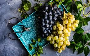 Картинка тарелка, виноград, гроздья