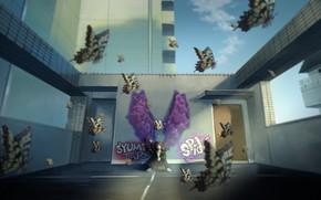 Картинка крыша, бабочки, город, парень, графити