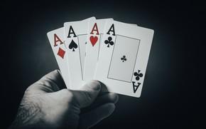 Картинка карты, игра, House of Cards