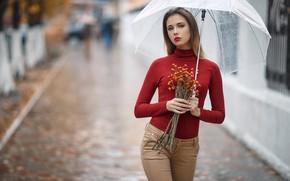 Картинка взгляд, дождь, улица, Девушка, зонт, фигура, Сергей Сорокин