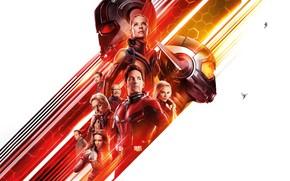 Обои Girl, Action, Heroes, Ghost, Superheroes, Hero, Evangeline Lilly, Sexy, the, Men, Female, and, year, 2018, ...