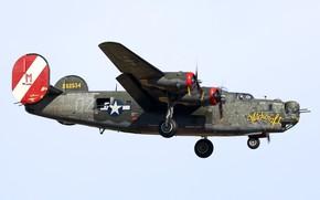 Картинка Liberator, Witchcraft, B-24J